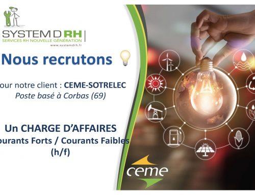 Opportunité #CDI Rhône-Alpes – Chargé d'affaires CFA/CFO (h/f)
